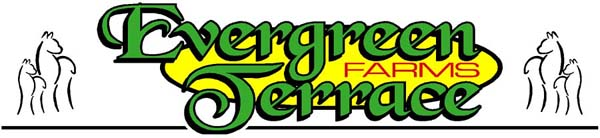 Evergreen Terrace Farms